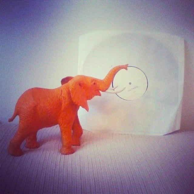 Orouni - Grand Tour test pressing - De La Jolie Musique elephant