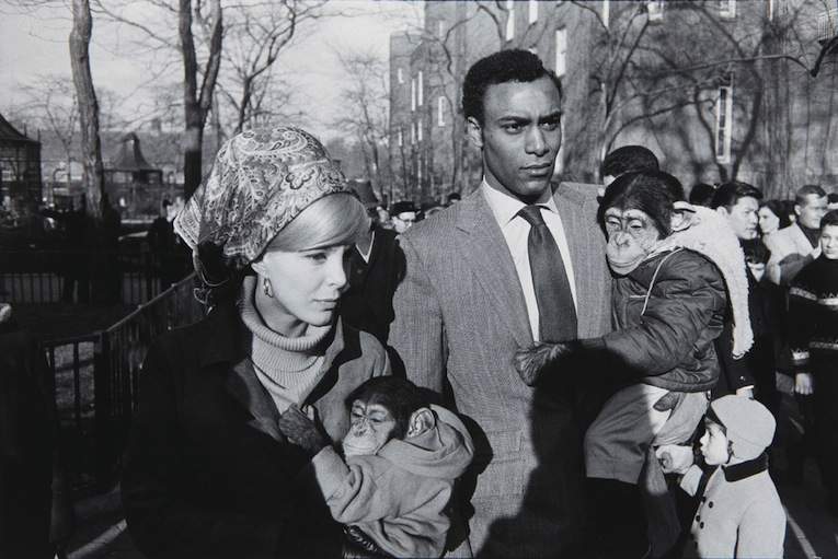 Garry Winogrand - Central park, New York